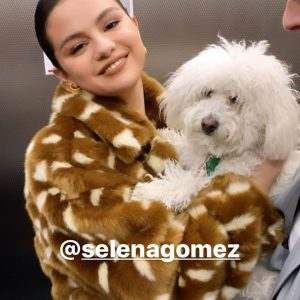 13 January Selena is in New York videos from Anna Collins's and Hung Vanngo's Instagram Stories