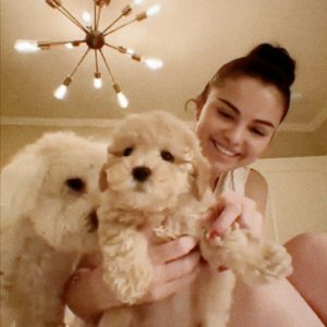23 March Selena got new puppy Daisy, watch new Instagran Live
